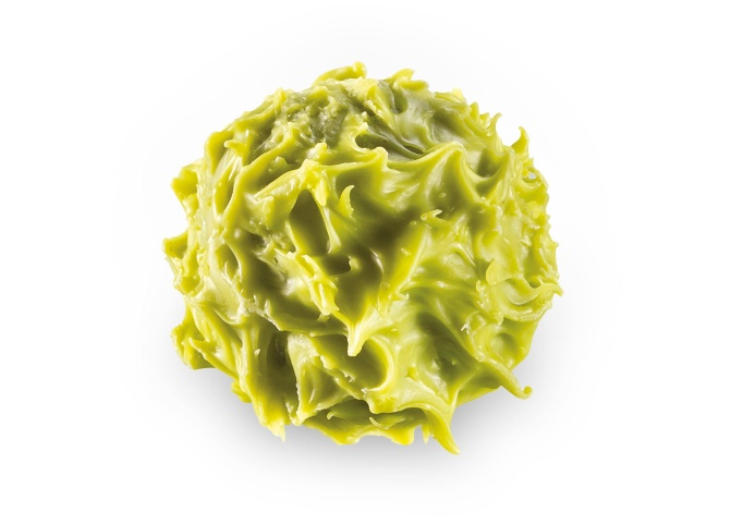 Chardon Chartreuse des Alpes