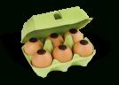 6 œufs coquille - Chocolats Voisin